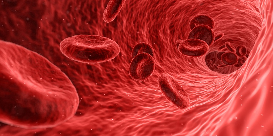 Что такое пуповинная кровь